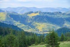 Paisagem do verão da parte superior da montanha, negligenciando a cordilheira e os pinhos verdes fotografia de stock