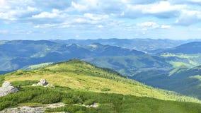 Paisagem do verão da parte superior da montanha, negligenciando a cordilheira e os pinhos verdes 16:9 fotos de stock royalty free