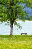 Paisagem do verão de Achensee (Áustria). imagem de stock