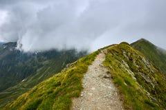 Paisagem do verão de Mountaineous Imagens de Stock