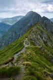 Paisagem do verão de Mountaineous Imagens de Stock Royalty Free