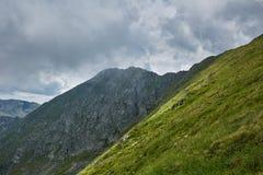 Paisagem do verão de Mountaineous Fotografia de Stock