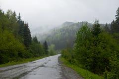 Paisagem do verão e estrada molhada Fotografia de Stock Royalty Free