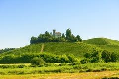 Paisagem do verão em Langhe (Itália) Imagens de Stock Royalty Free