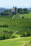 Paisagem do verão em Langhe (Itália) Imagem de Stock Royalty Free