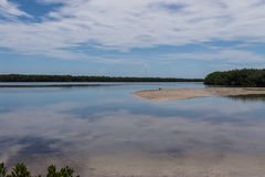 Paisagem do verão, J n Refúgio de Ding Darling National Wildlife fotografia de stock royalty free