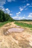 Paisagem do VERÃO Pudle na estrada de terra rural ao longo da floresta, subúrbios de Moscou, Rússia Imagem de Stock