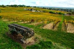 Paisagem do vinhedo de Fronsac, vinhedo sul a oeste de França Imagens de Stock