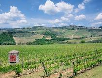 Paisagem do vinhedo, região do Chianti, Toscânia, Itália imagem de stock