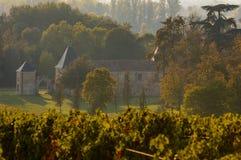 Paisagem do vinhedo, vinhedo sul a oeste de França Imagem de Stock Royalty Free