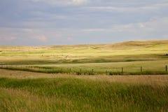Paisagem dos campos e das pastagem Fotografia de Stock
