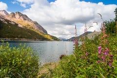 Paisagem dos cumes da dolomite - lago Fedaia Fotografia de Stock Royalty Free