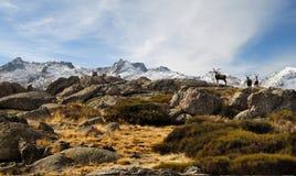 paisagem dos gredos com homens da montanha fotos de stock