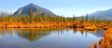 Paisagem dos lagos vermilion no parque nacional de Banff fotografia de stock royalty free