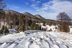 Paisagem dos montes, das florestas e dos prados cobertos com a neve Fotografia de Stock Royalty Free