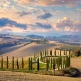 Paisagem dos montes, estrada secundária, árvores de ciprestes - Itália fotos de stock royalty free
