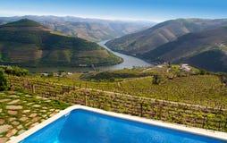 Paisagem dos vinhedos do vinho do Porto Fotografia de Stock Royalty Free
