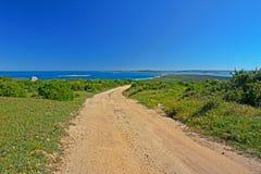 Paisagem dos wildflowers, do mar e do céu, Langebaan, África do Sul fotos de stock
