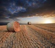 Paisagem dourada bonita do por do sol das balas de feno da hora Fotos de Stock Royalty Free
