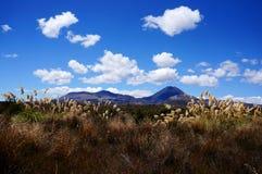 Paisagem dramática da montanha - cruzamento de Tongariro Fotografia de Stock