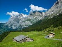 Paisagem em alpes de Switzerland Imagens de Stock