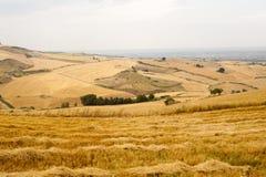 Paisagem em Basilicata (Italy) Fotos de Stock Royalty Free