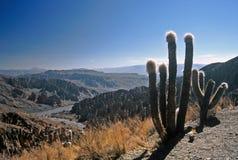 Paisagem em Bolívia, Tupiza, Bolívia foto de stock