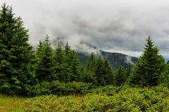 Paisagem em Carpathians, cume sob nuvens, Ucrânia da montanha de Chornogora, Europa Foto de Stock