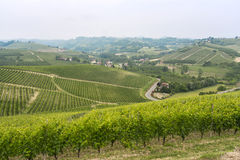 Paisagem em Langhe (Piedmont) Foto de Stock Royalty Free
