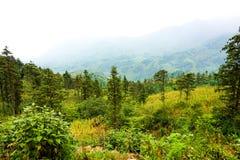 Paisagem em Pa do Sa, Vietname Fotografia de Stock