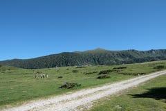 Paisagem em Pyrenees Imagem de Stock Royalty Free