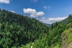 Paisagem em Romania Foto de Stock Royalty Free
