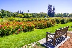 Paisagem em Rose Garden municipal, San Jose, Califórnia fotos de stock