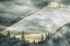 A paisagem em Sierra Nevada, dobra exposto Fotografia de Stock Royalty Free
