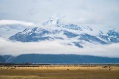 Paisagem em torno do Mt Parque nacional do cozinheiro/Aoraki, Nova Zelândia Foto de Stock