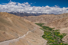 Paisagem em torno do Tso de Pangong Pangong do lago em Ladakh, Indi Fotos de Stock
