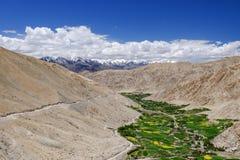 Paisagem em torno do Tso de Pangong Pangong do lago em Ladakh, Indi Imagens de Stock Royalty Free