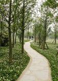 Paisagem em um parque, chengdu da mola, porcelana Imagens de Stock Royalty Free
