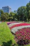 Paisagem em um parque da cidade Foto de Stock Royalty Free