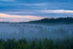Paisagem enevoada da noite de verão e céu nebuloso Fotos de Stock Royalty Free