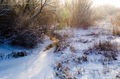 Paisagem ensolarada do inverno Imagem de Stock Royalty Free