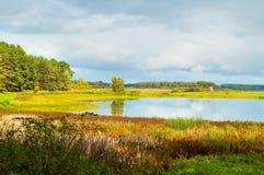 Paisagem ensolarada do outono de árvores do rio de Soroti e de floresta do outono em Pushkinskiye cruento, Rússia - o filtro maci Fotos de Stock Royalty Free