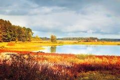 Paisagem ensolarada do outono de árvores do rio de Soroti e de floresta do outono em Pushkinskiye cruento, Rússia - o filtro maci Imagem de Stock Royalty Free