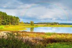Paisagem ensolarada do outono de árvores do rio de Soroti e de floresta do outono em Pushkinskiye cruento, Rússia - o filtro maci Fotografia de Stock