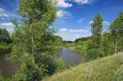 Paisagem ensolarada do verão com montes verdes, rio, campos e madeiras distantes foto de stock royalty free