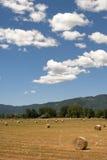 Paisagem entre Lazio e Úmbria no verão Foto de Stock