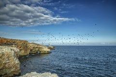 Paisagem espetacular em penhascos do litoral fotos de stock royalty free