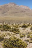 A paisagem estéril do Altiplano fotografia de stock