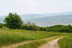 Paisagem, estrada de terra e plantações verdes Fotografia de Stock