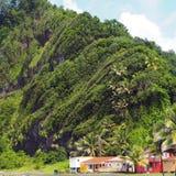 Paisagem exótica em grande-Rivière, nordeste de Martinica fotos de stock